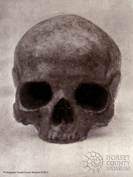 Bettiscombe Skull