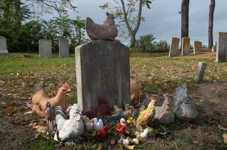 Nancy Luce, chicken poet.